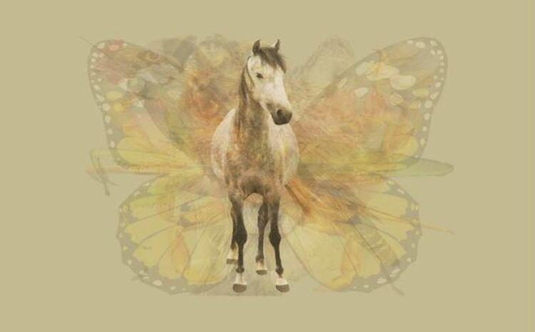 İlk önce atı gördüyseniz...