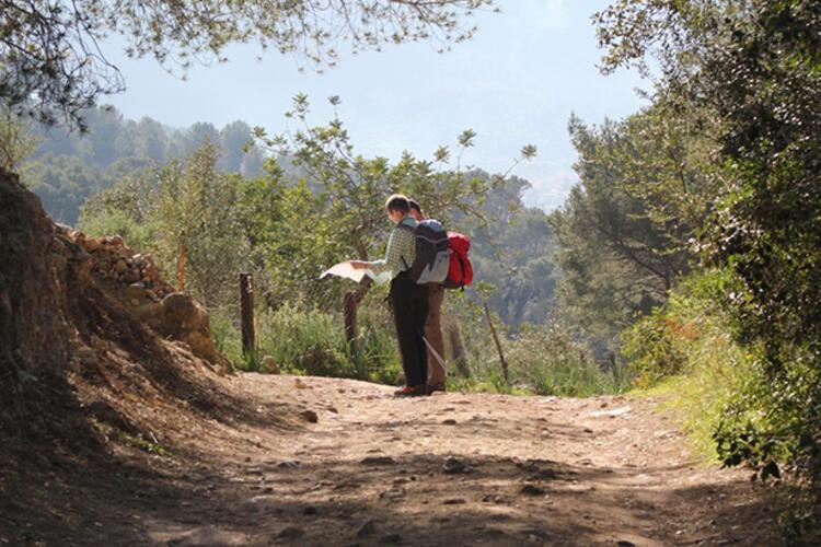 Meyve kokuları arasında: Mysia Yolları