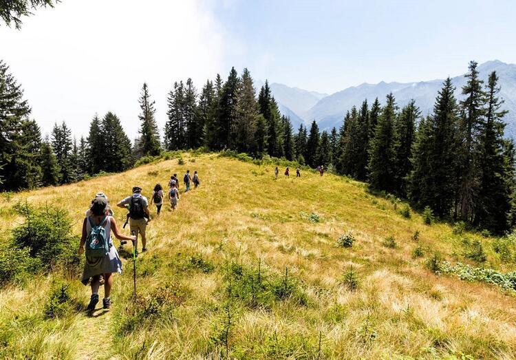 Oksijen deposu: Kaçkar Dağları