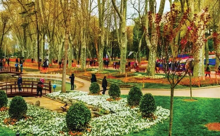 8 - 'Ben bir ceviz ağacıyım...' Gülhane Parkı - İSTANBUL