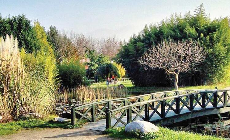 9 - Bitkileri keşfedin Bakırköy Botanik Park - İSTANBUL
