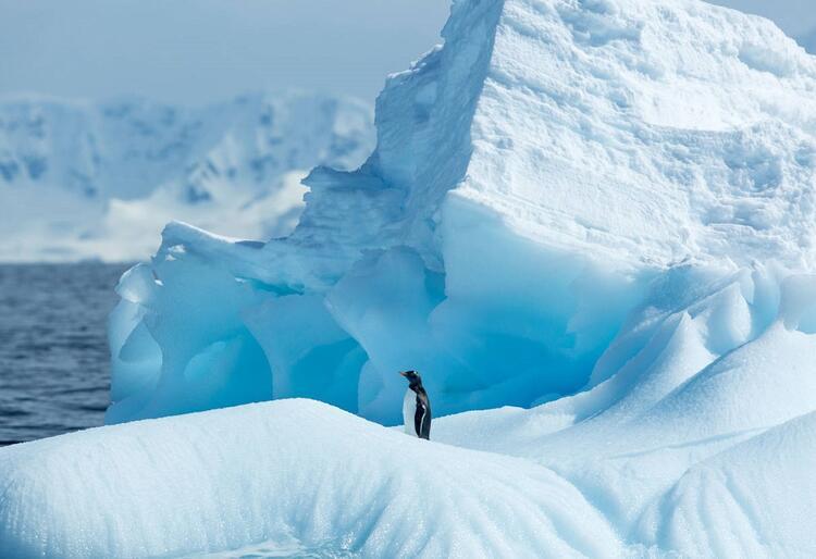Dünyanın ilginç lokasyonlarına online gezi fırsatı