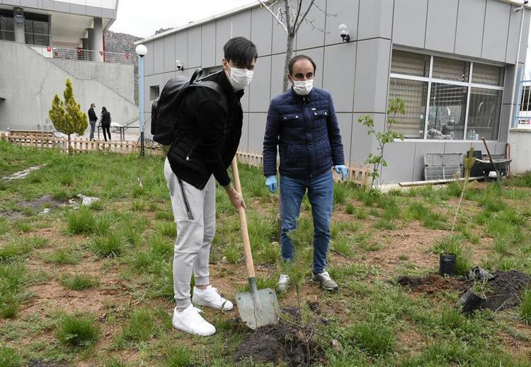 Yurdun bahçesine ağaç dikti