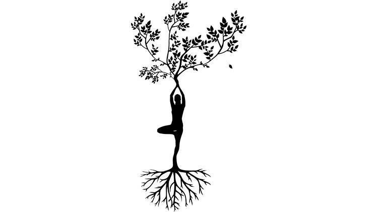 Yang Ağaç