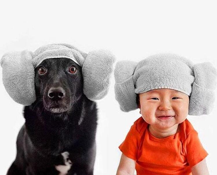Jasper ve köpeği Zoeyin eğlenceli fotoğrafları