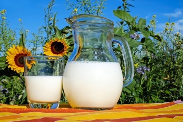 Sütünüzü güvenilir yerden alın