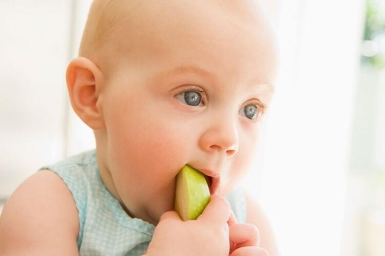 6. aydan sonra bebekler kendilerini besleyebilir