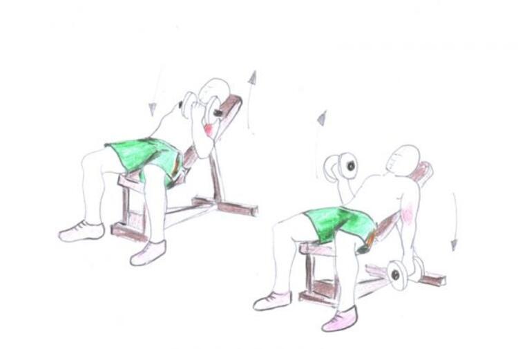 Uygulanacak biceps hareketleri