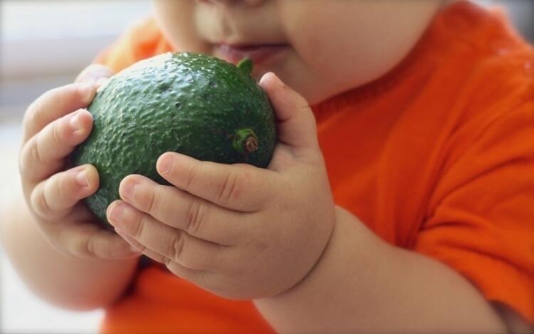 Prebiyotikler hangi besinlerde bulunur