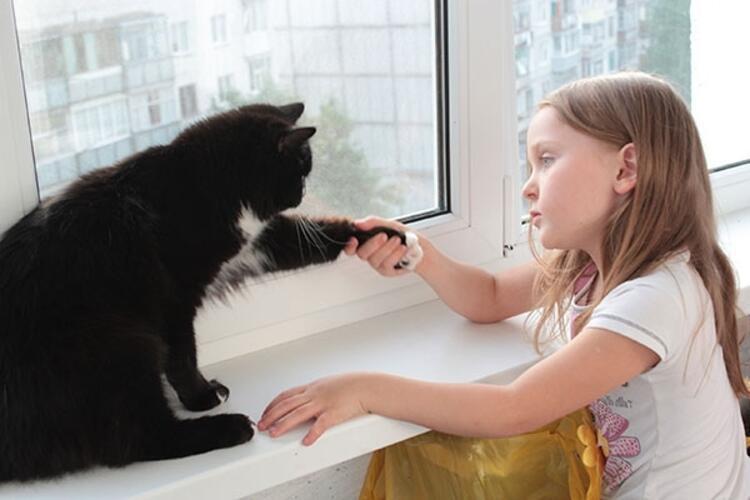 Tek çocuk sendromu evcil hayvan ile aşılabilir