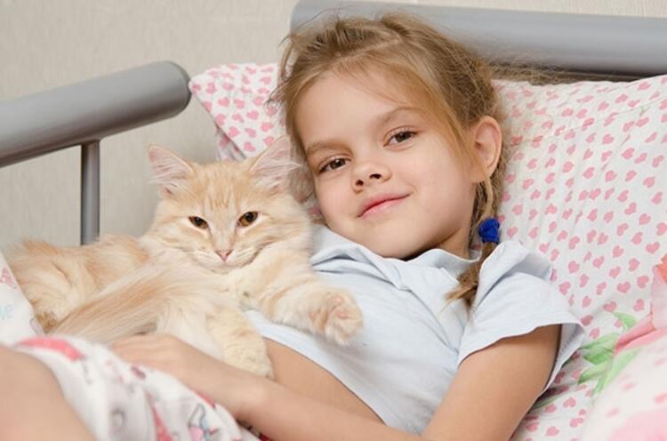 Çocuklara insan haklarının yanı sıra hayvan hakları da anlatılmalı