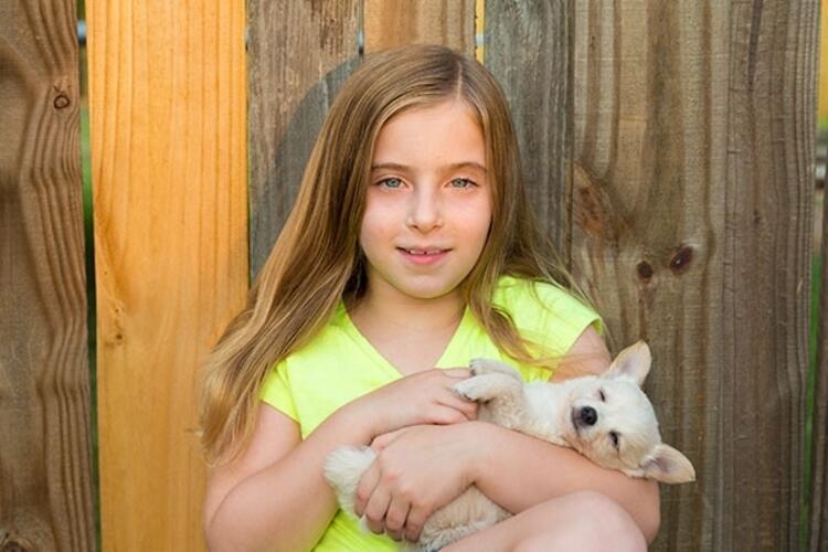 Örneğin; bir köpek yavrusunu büyütmenin çocuğa kattıkları: