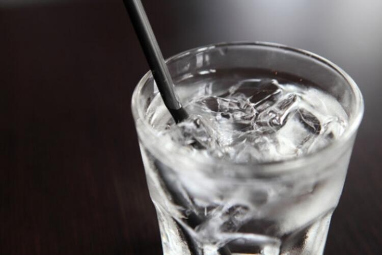 Su hariç tüm yiyecek ve içeceklere alerji