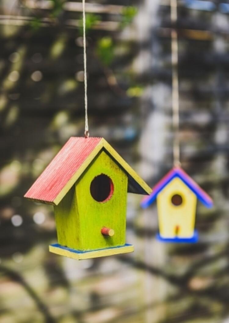 Çocuklar Rengarenk Kuş Evleri Yapıyor