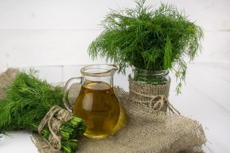Nefes açıcı bir tarif: Dereotu çayı