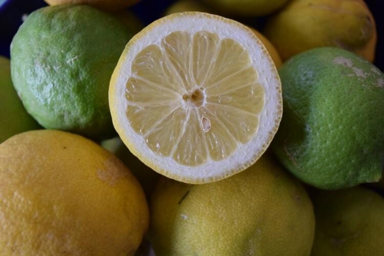 11- C vitamininden zengin besinler