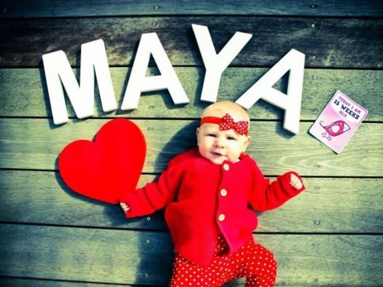 Maya 15 haftalık