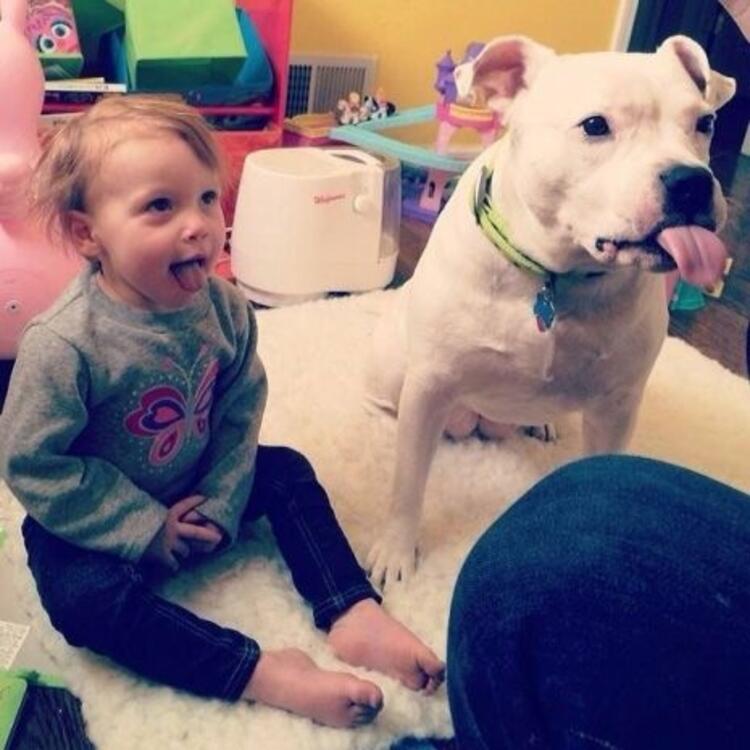 Çocukların köpeklerle kurduğu muhteşem dostluk