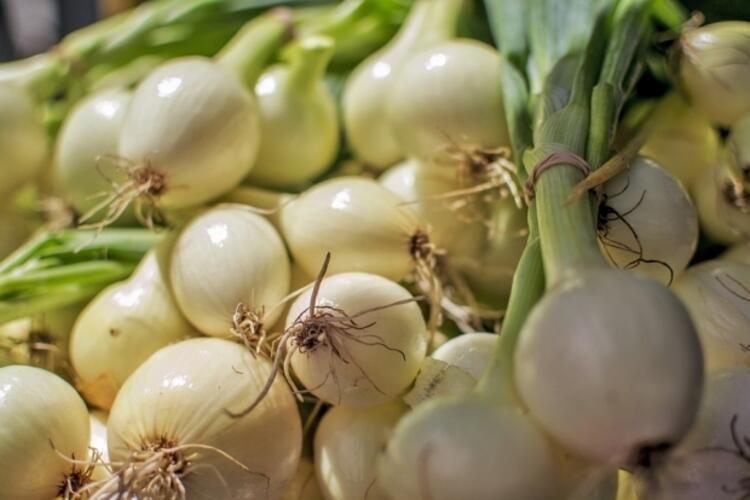 Doğal antibiyotik etkili soğan ve sarımsak