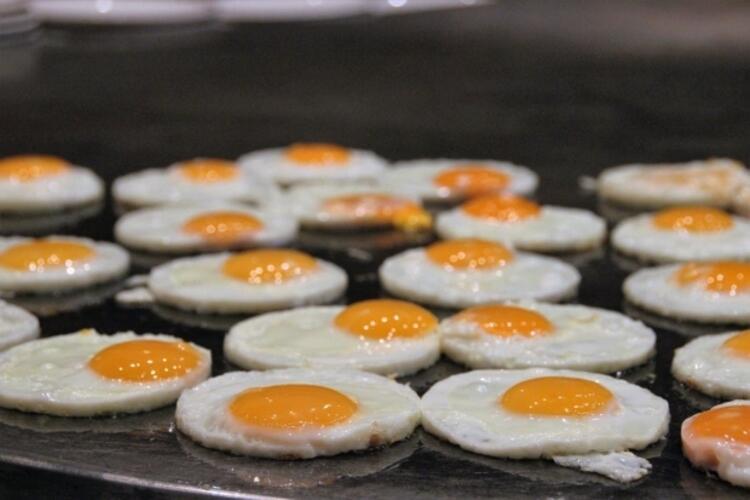 Kolesterol yükseltici etkisi et ve süt ürünlerine göre düşük