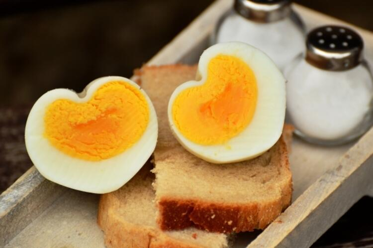 Her gün 1 adet yumurta