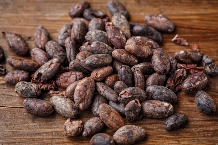 Kakao / Çikolata