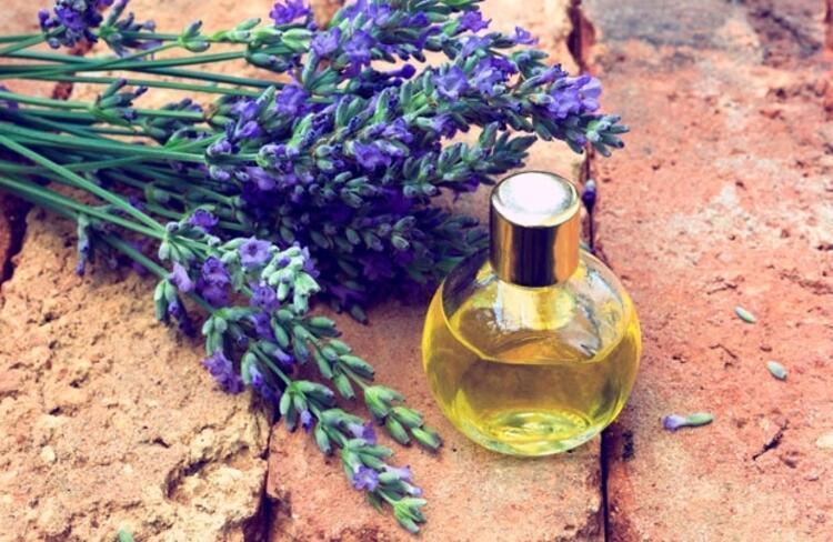 6) Lavanta çiçeği ya da lavanta yağı