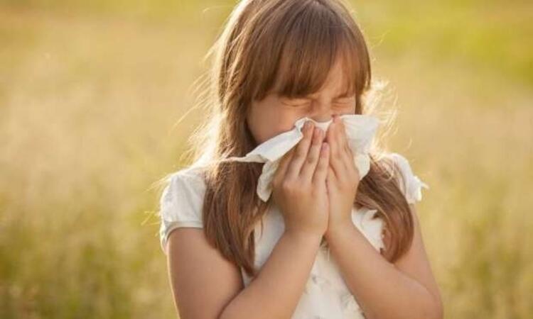 Alerjenlerden en çok solunum yolları etkileniyor