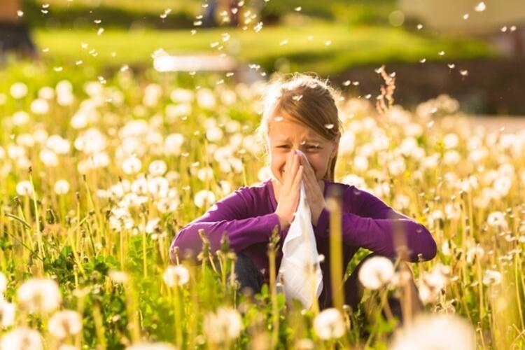 Ailede alerjik bireyler varsa çocuklar mutlaka incelenmeli