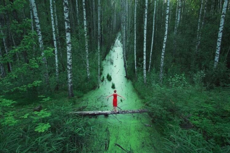Sonu olmayan ormanlar - Rusya