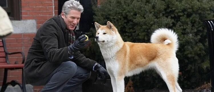 Hachi: Bir Köpeğin Hikayesi (Hachi: A Dogs Tale)