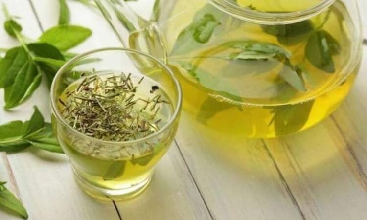 Günde 1 fincan yeşil çay