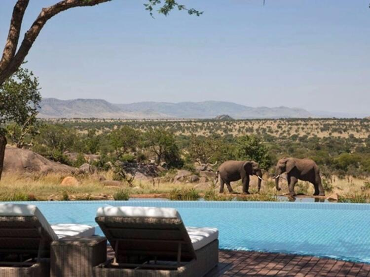 Four Seasons Safari Lodge/Tanzanya