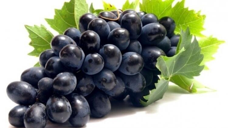 Kara üzüm problem çözme yeteneğini geliştiriyor