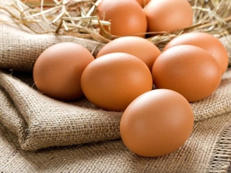 Yumurta yeni hücrelerin gelişimini destekler