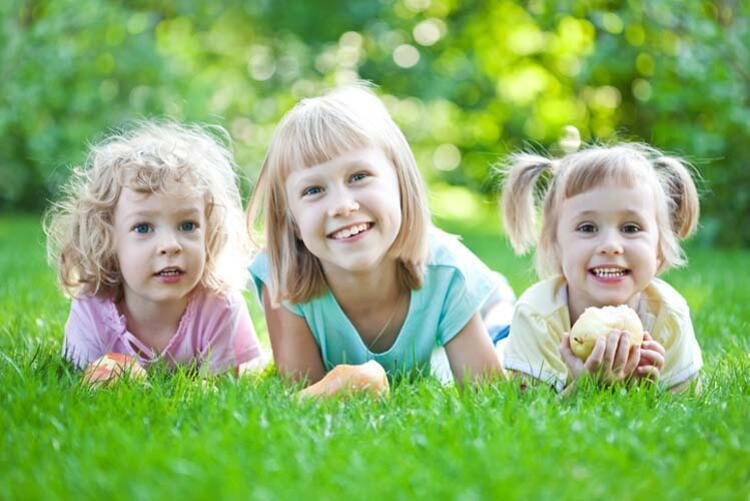 Piknik alanlarında kene riski yüksek