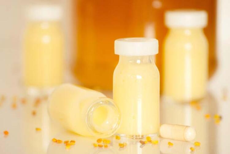 Arı sütü nedir
