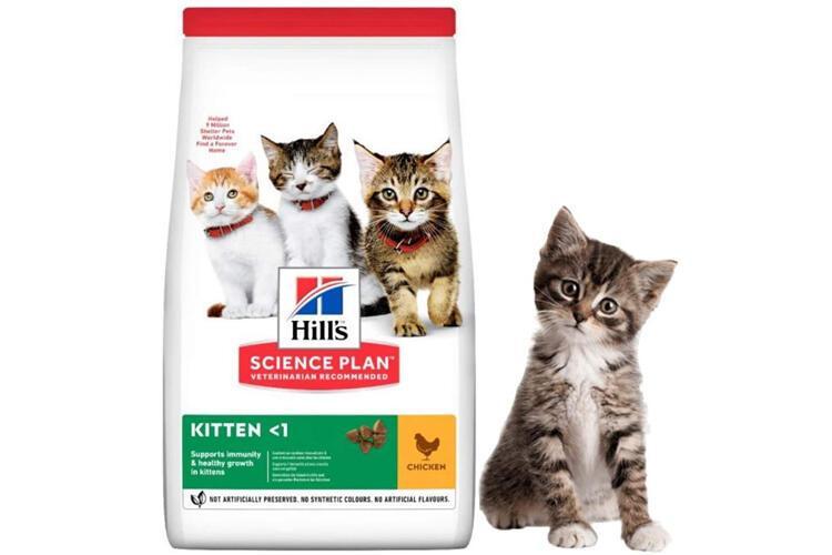 Hills Kitten Yavru Kedi Maması
