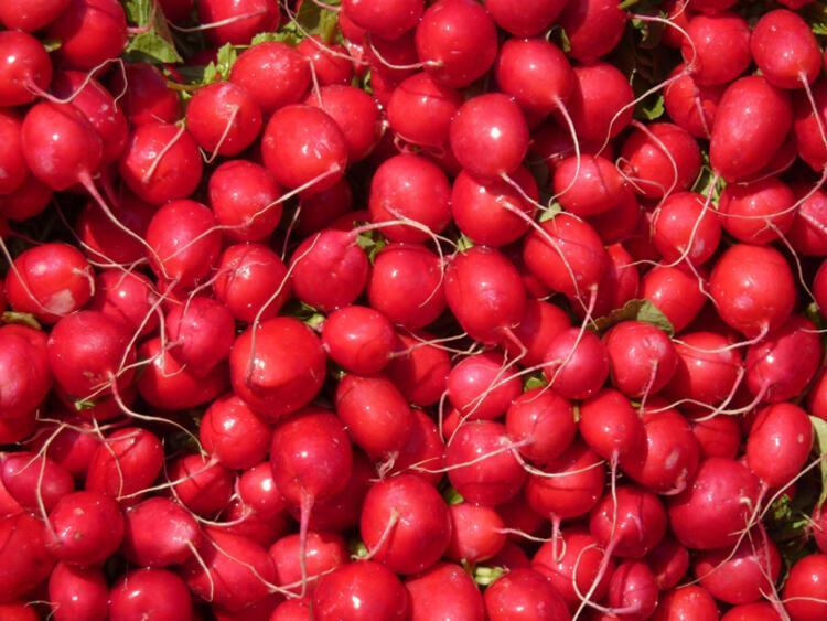 Mevsim sebze ve meyvelerini tercih ederek, en yüksek vitamini alalım: