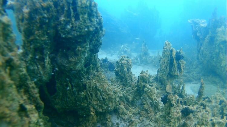 """""""Van Gölü 800 bin yıllık muhteşem bir geçmişe sahip"""""""