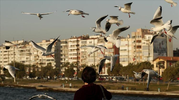 8. sıradaki il İzmir