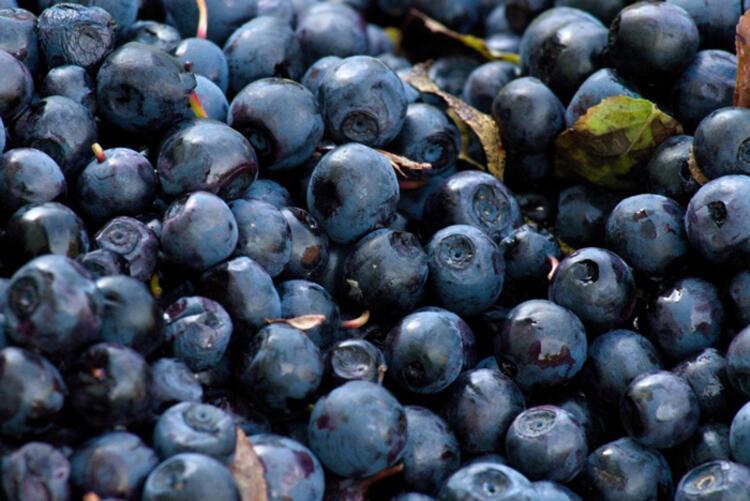Üzümsü meyveleri ihmal etmeyin