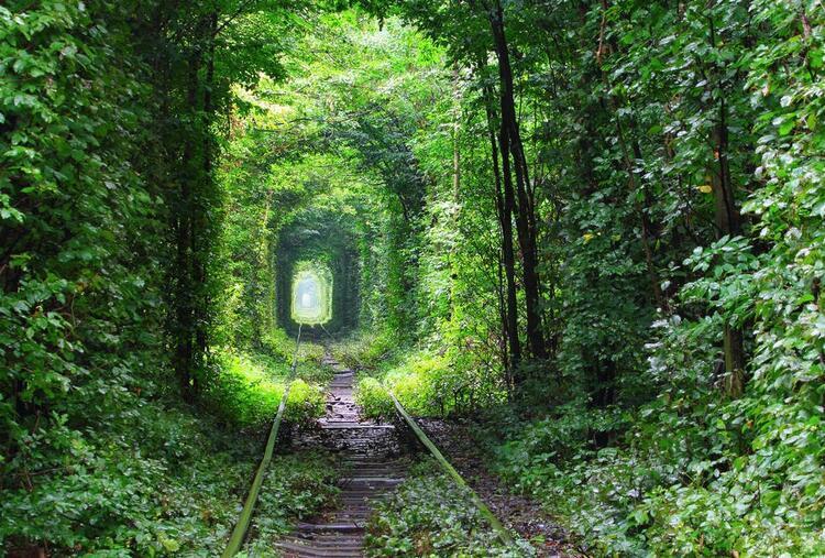 Ukraynadaki Aşk Tüneli
