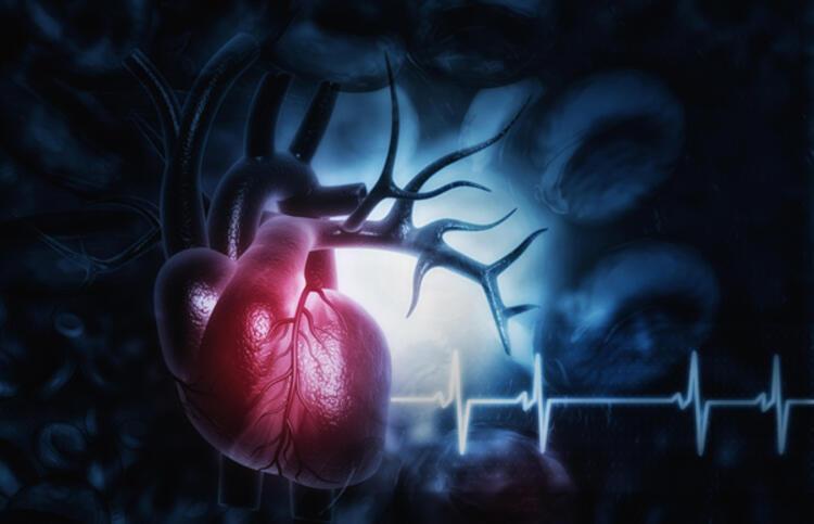 Kalp hastalıklarına neden olan faktörler