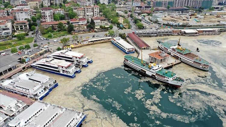 Deniz salyası (müsilaj) nedir, neden olur? İşte Marmara Denizi'ndeki son  durum.. - Son Dakika Flaş Haberler