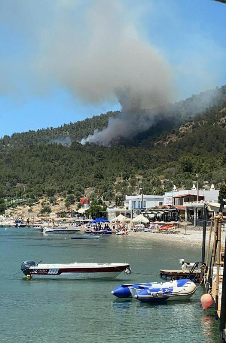 Milas'ta orman yangını! Müdahale ediliyor - Son Dakika Haberler