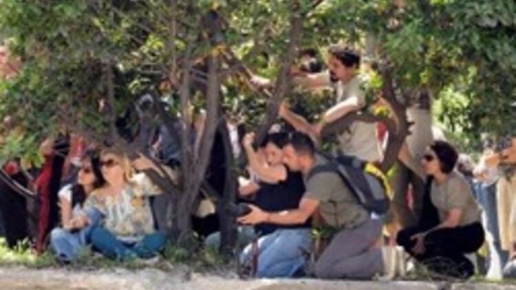 """İBB: """"Gezi Parkı'nda ağaç kesilmiyor"""""""