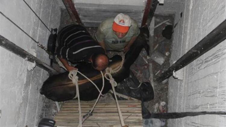 Asansör boşluğuna düşen ineği vatandaşlar kurtardı