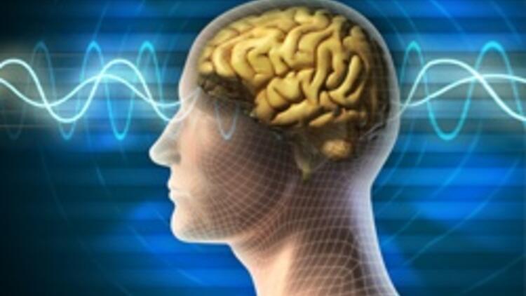Bir bakışta her şeyi kaydeden beyin