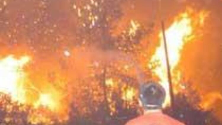 Bodrum'daki orman yangını kontrol altına alınamıyor
